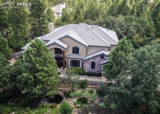 571 Silver Oak Grove, Colorado Springs, CO 80906 (#8583680) :: Fisk Team, RE/MAX Properties, Inc.