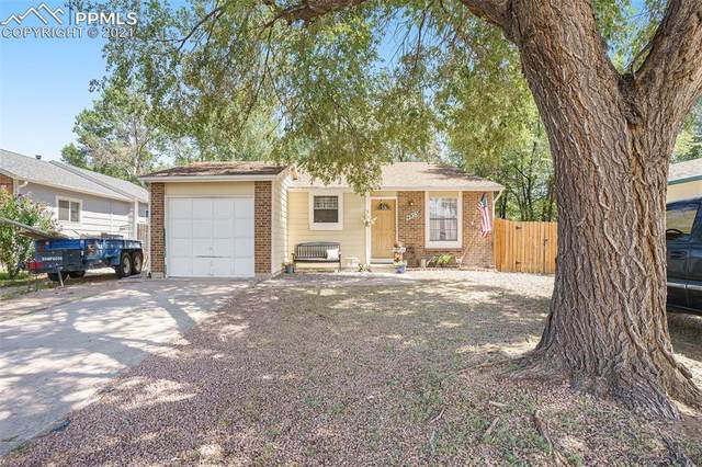 4955 Marabou Way, Colorado Springs, CO 80911 (#8584603) :: Tommy Daly Home Team