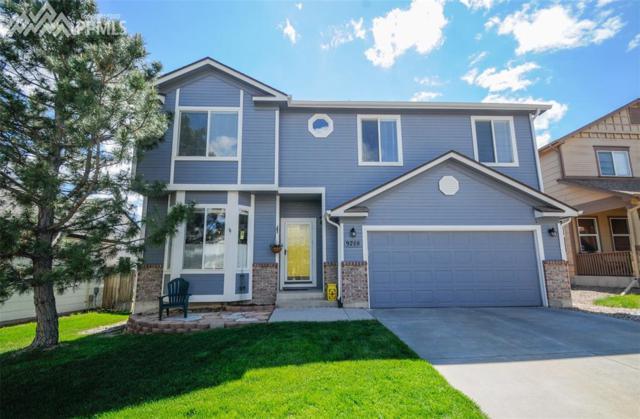 9208 Prairie Clover Drive, Colorado Springs, CO 80920 (#8591334) :: 8z Real Estate