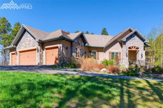 4665 Saxton Hollow Road, Colorado Springs, CO 80908 (#8595605) :: Jason Daniels & Associates at RE/MAX Millennium