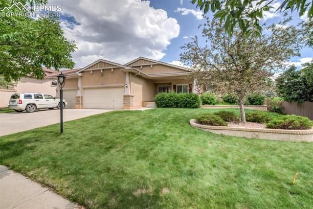 3565 Hollycrest Drive, Colorado Springs, CO 80920 (#8595995) :: The Hunstiger Team