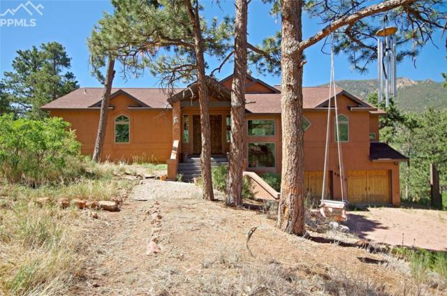 4890 Pyramid Mountain Road, Cascade, CO 80809 (#8596784) :: The Treasure Davis Team