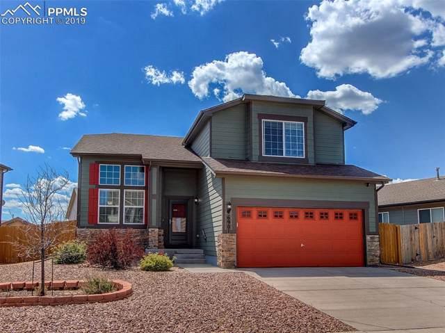 6901 Dusty Miller Way, Colorado Springs, CO 80908 (#8599142) :: 8z Real Estate