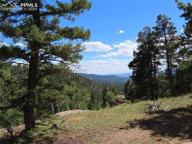 2494 N Mountain Estates Road, Florissant, CO 80816 (#8601960) :: Fisk Team, RE/MAX Properties, Inc.