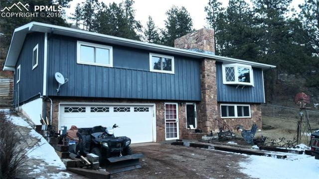 217 Crystola Canyon Road, Woodland Park, CO 80863 (#8603959) :: 8z Real Estate