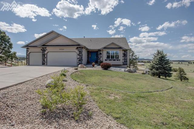 20320 Doewood Drive, Monument, CO 80132 (#8605717) :: The Treasure Davis Team