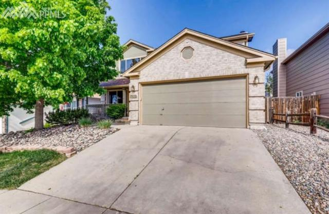 7820 French Road, Colorado Springs, CO 80920 (#8606754) :: The Treasure Davis Team