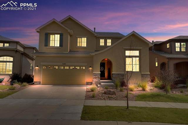 7280 Jagged Rock Circle, Colorado Springs, CO 80927 (#8611240) :: Tommy Daly Home Team