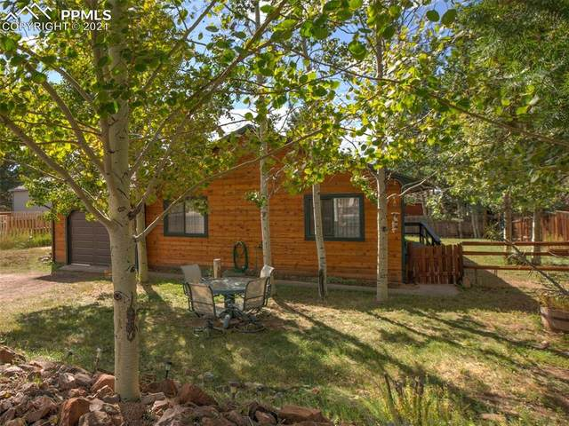 131 Grace Avenue, Woodland Park, CO 80863 (#8611282) :: Tommy Daly Home Team
