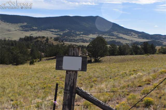 TBD Agate Creek Road, Guffey, CO 80820 (#8612084) :: 8z Real Estate