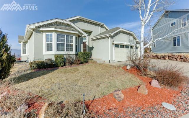 336 Mountain Lover Terrace, Colorado Springs, CO 80921 (#8613738) :: Action Team Realty