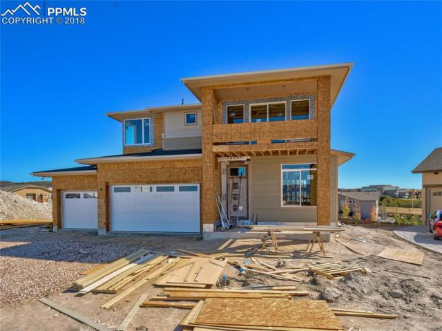 10035 Buck Gulch Court, Colorado Springs, CO 80924 (#8619109) :: 8z Real Estate