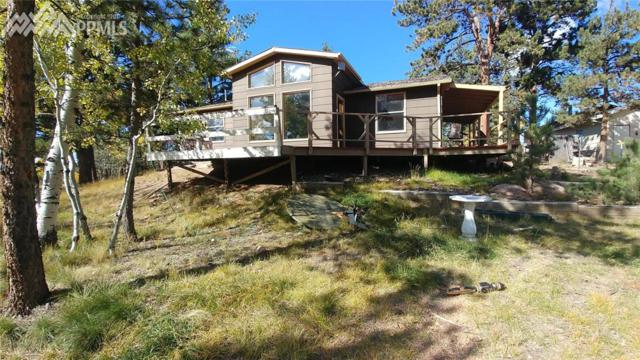 145 Cheyenne Creek Road, Lake George, CO 80827 (#8622694) :: RE/MAX Advantage
