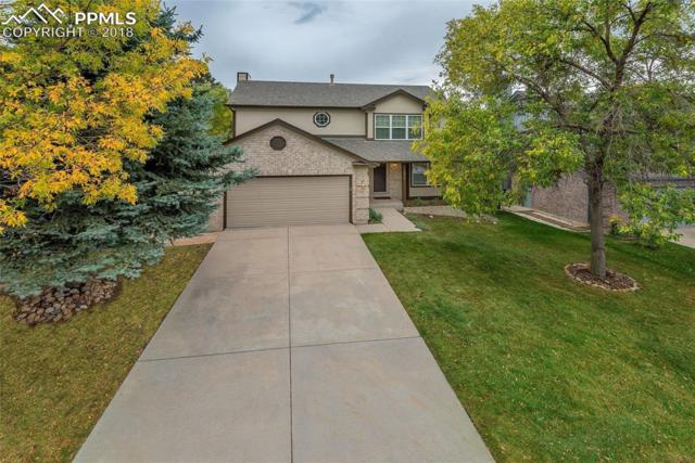 1915 Manning Way, Colorado Springs, CO 80919 (#8628296) :: The Daniels Team