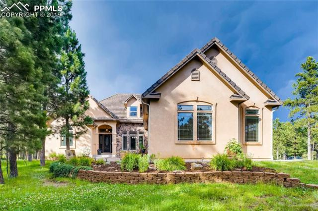 15605 Pole Pine Point, Colorado Springs, CO 80908 (#8630050) :: The Treasure Davis Team