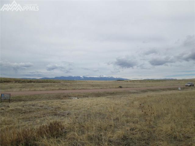 1710 Aldrin Place, Colorado Springs, CO 80929 (#8633899) :: The Kibler Group