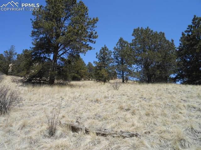 1055 Copper Mountain Drive, Cripple Creek, CO 80813 (#8634422) :: The Kibler Group