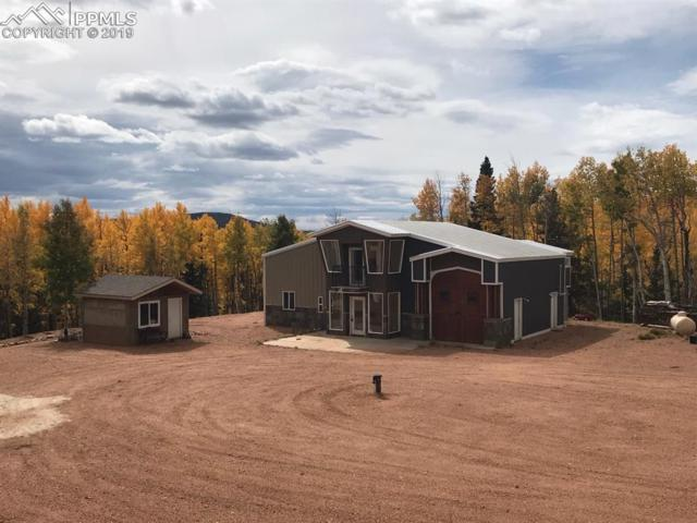 1626 County 61 Road, Cripple Creek, CO 80813 (#8634880) :: Jason Daniels & Associates at RE/MAX Millennium