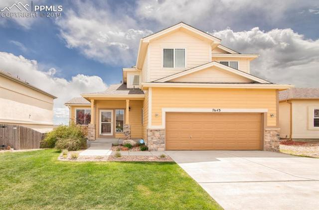 7643 Duck Hawk Place, Fountain, CO 80817 (#8635307) :: Action Team Realty