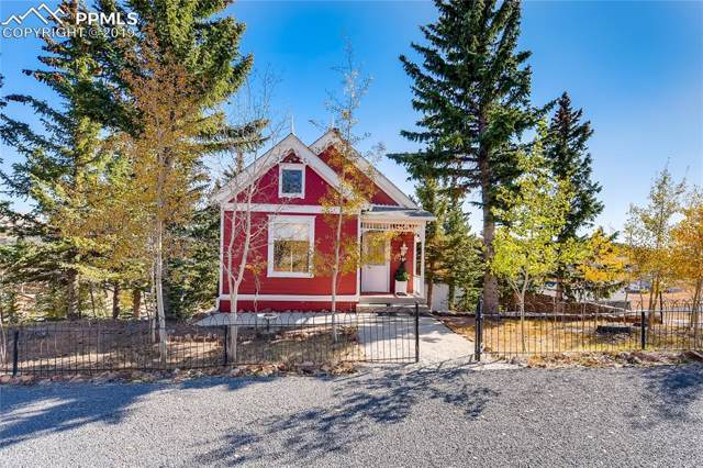 238 W May Avenue, Cripple Creek, CO 80813 (#8637618) :: 8z Real Estate