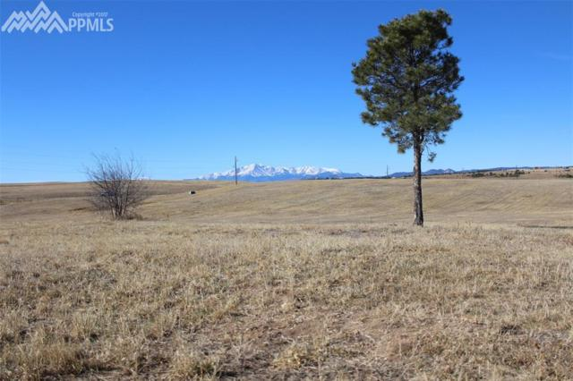 16710 Black Forest Road, Colorado Springs, CO 80908 (#8641190) :: 8z Real Estate