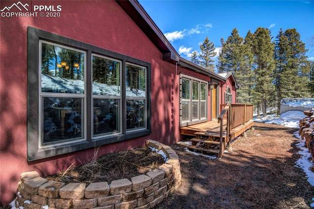 177 Donzi Trail, Florissant, CO 80816 (#8641966) :: Colorado Home Finder Realty