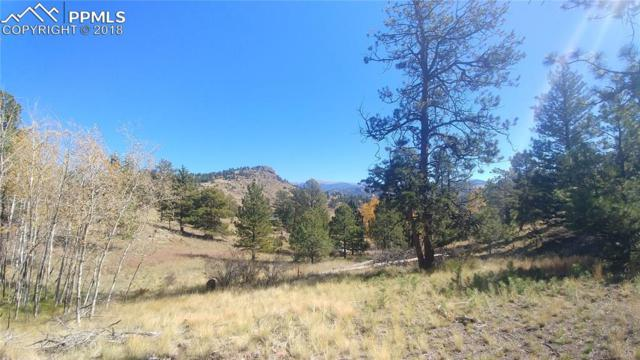74 Columbine Lane, Florissant, CO 80816 (#8645401) :: The Peak Properties Group