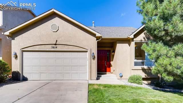 5614 University Village View, Colorado Springs, CO 80918 (#8645840) :: Colorado Home Finder Realty