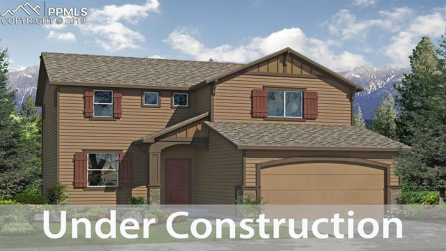2606 Shawnee Drive, Colorado Springs, CO 80922 (#8646127) :: Tommy Daly Home Team