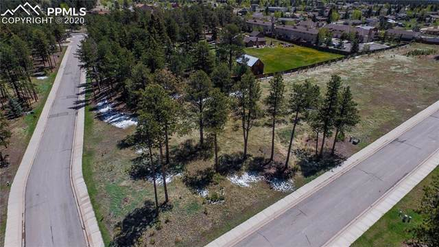 1235 Cottontail Trail, Woodland Park, CO 80863 (#8646394) :: Tommy Daly Home Team