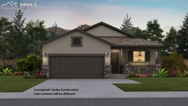 11045 Deer Feather Drive, Colorado Springs, CO 80908 (#8647879) :: Jason Daniels & Associates at RE/MAX Millennium