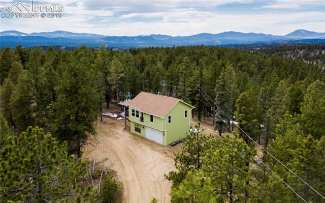 343 Lost Lake Drive, Divide, CO 80814 (#8649734) :: Tommy Daly Home Team