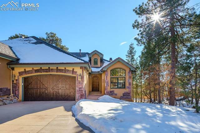 4395 Carriage House View, Colorado Springs, CO 80906 (#8650196) :: 8z Real Estate