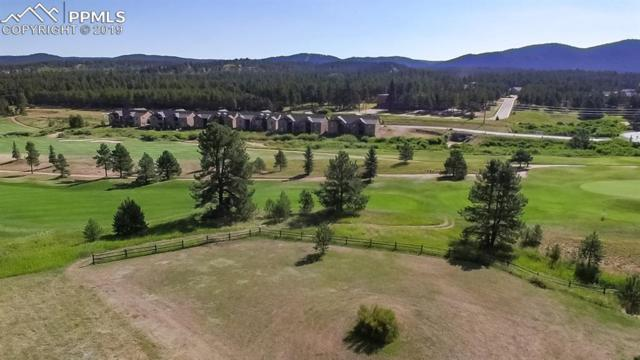 1210 Woodland Valley Ranch Drive, Woodland Park, CO 80863 (#8652686) :: 8z Real Estate