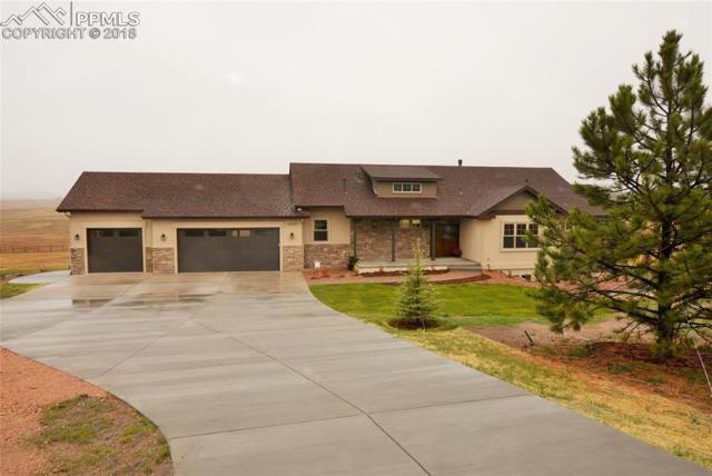 18561 Cherry Springs Ranch Road, Monument, CO 80132 (#8652876) :: Action Team Realty