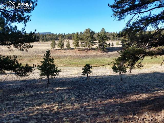 5633 County Road 102 Road, Guffey, CO 80820 (#8657378) :: Finch & Gable Real Estate Co.