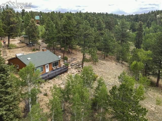 258 Spruce Creek Road, Divide, CO 80814 (#8657625) :: CC Signature Group