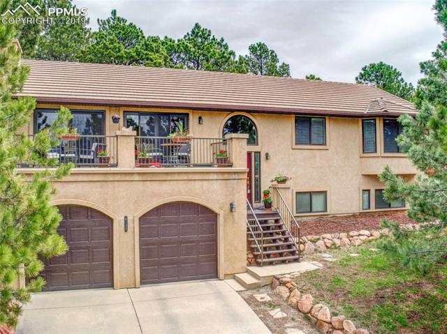 6135 Briarcliff Road, Colorado Springs, CO 80918 (#8660512) :: CC Signature Group