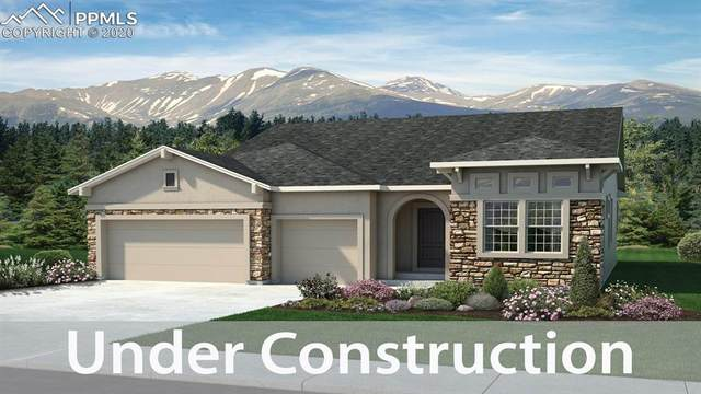 16034 Misty Rain Court, Monument, CO 80132 (#8661526) :: Compass Colorado Realty