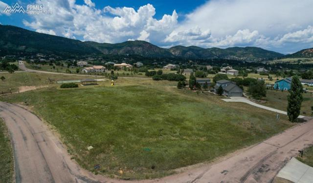 3890 Range View Road, Monument, CO 80132 (#8664206) :: 8z Real Estate