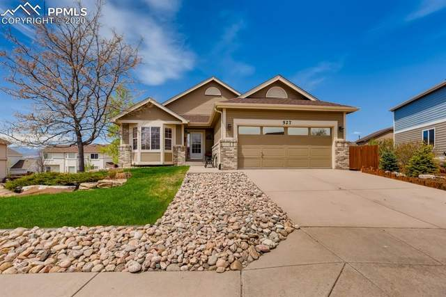 527 Shrubland Drive, Colorado Springs, CO 80921 (#8664385) :: Tommy Daly Home Team