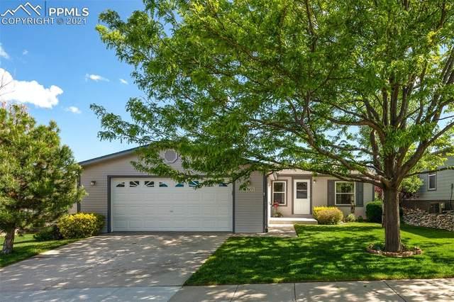 4655 Gray Fox Heights, Colorado Springs, CO 80922 (#8666950) :: Venterra Real Estate LLC