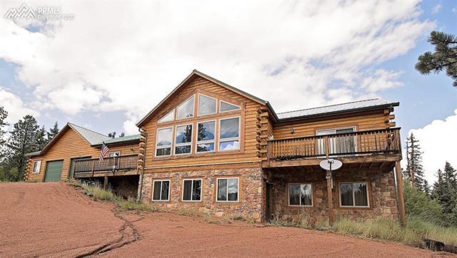 533 W Lake Drive, Divide, CO 80814 (#8667200) :: 8z Real Estate
