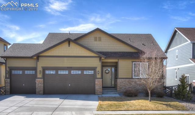 8249 Knotty Alder Court, Colorado Springs, CO 80927 (#8670647) :: Compass Colorado Realty