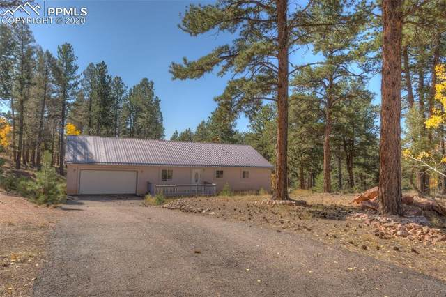 40 Oregon Circle, Florissant, CO 80816 (#8672277) :: The Harling Team @ Homesmart Realty Group