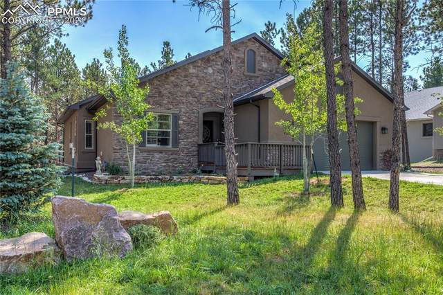1319 Firestone Drive, Woodland Park, CO 80863 (#8674279) :: Tommy Daly Home Team