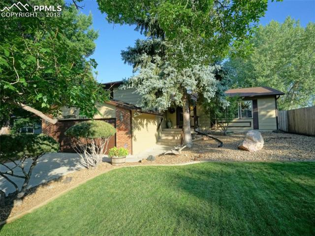 3365 Ashwood Circle, Colorado Springs, CO 80906 (#8675130) :: The Hunstiger Team