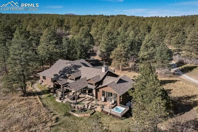 916 Crooked Tree Place, Larkspur, CO 80118 (#8680122) :: CC Signature Group