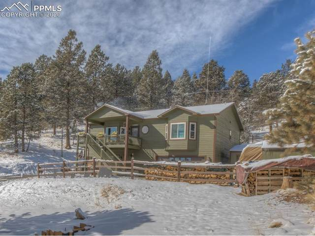 449 Twin Lakes Drive, Divide, CO 80814 (#8683134) :: Tommy Daly Home Team