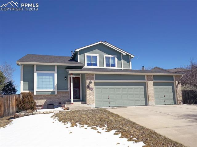 6556 Peak Vista Circle, Colorado Springs, CO 80918 (#8683792) :: The Dunfee Group - powered by eXp Realty